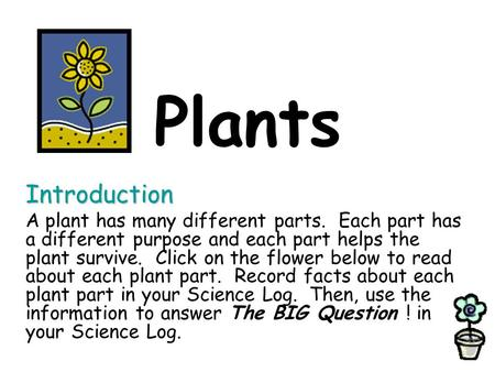 Plants Introduction A plant has many different parts. Each part has a different purpose and each part helps the plant survive. Click on the flower below.