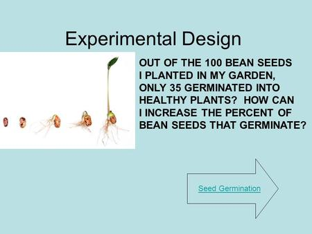 Experimental Design OUT OF THE 100 BEAN SEEDS I PLANTED IN MY GARDEN,