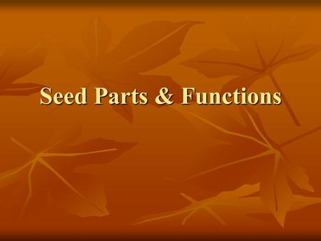 "Seed Parts & Functions. Seeds There are 2 types of seeds There are 2 types of seeds 1. Monocot 1. Monocot 2. Dicot 2. Dicot ""Mono"" is Latin for one ""Mono"""