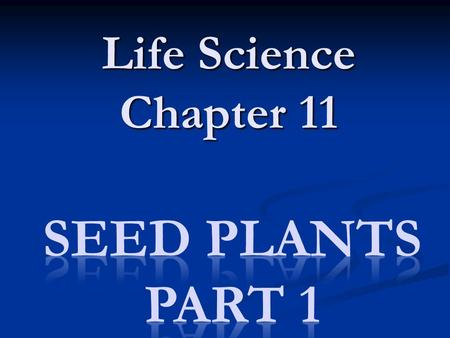 Life Science Chapter 11. Plant Classification Kingdom Plantae Kingdom Plantae Phylum: Bryophyta – Mosses, Liverworts & Hornworts Phylum: Bryophyta – Mosses,
