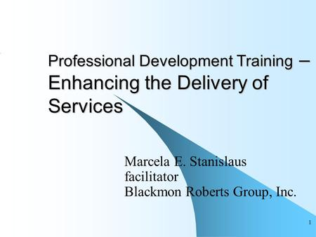 1 Professional Development Training – Enhancing the Delivery of Services Marcela E. Stanislaus facilitator Blackmon Roberts Group, Inc.