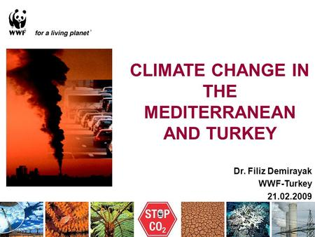 Dr. Filiz Demirayak WWF-Turkey 21.02.2009 CLIMATE CHANGE IN THE MEDITERRANEAN AND TURKEY.