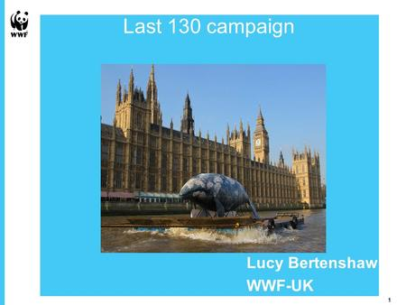1 Picture Placeholder 1 Overview of the Last 130 campaign Lucy Bertenshaw WWF-UK.