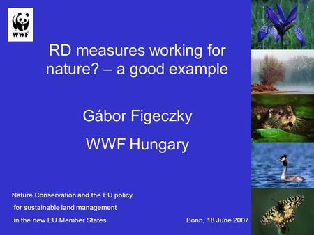 RD measures working for nature? – a good example Gábor Figeczky WWF Hungary Nature Conservation and the EU policy for sustainable land management in the.