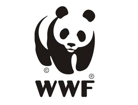 Partners for Biodiversity Protection in the Caucasus WWF Norway & WWF Caucasus.