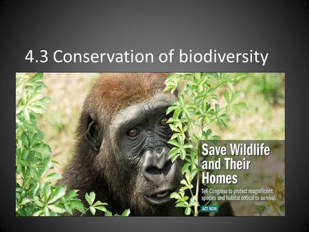 4.3 Conservation of biodiversity. Arguments for preserving species Ethical Aesthetic Genetic Resources Commercial Life Support/ecosystem support functions.