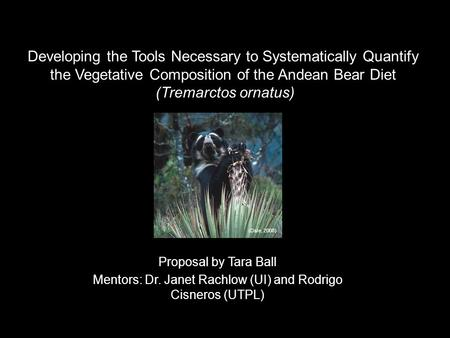Developing the Tools Necessary to Systematically Quantify the Vegetative Composition of the Andean Bear Diet (Tremarctos ornatus) Proposal by Tara Ball.
