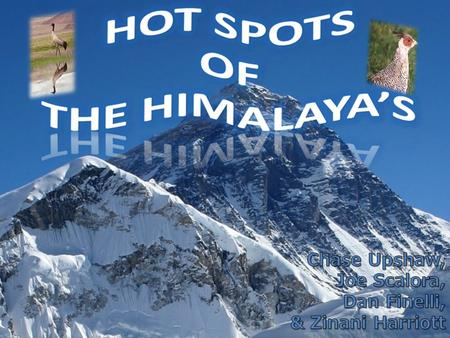 Overview of the Himalayas Location- stretches through Nepal, Pakistan, Bhutan, and India (Northern Asia) Divided into two regions: Eastern Himalayas and.