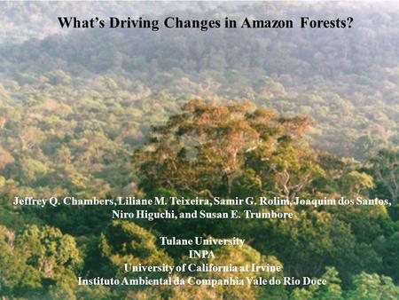 What's Driving Changes in Amazon Forests? Jeffrey Q. Chambers, Liliane M. Teixeira, Samir G. Rolim, Joaquim dos Santos, Niro Higuchi, and Susan E. Trumbore.