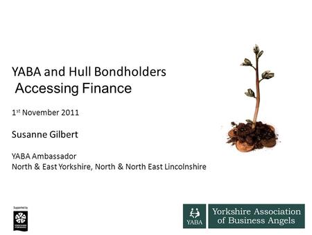 YABA and Hull Bondholders Accessing Finance 1 st November 2011 Susanne Gilbert YABA Ambassador North & East Yorkshire, North & North East Lincolnshire.