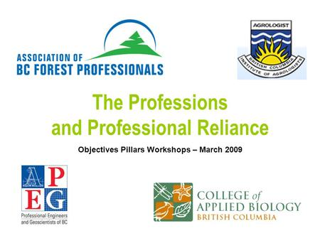 The Professions and Professional Reliance Objectives Pillars Workshops – March 2009.