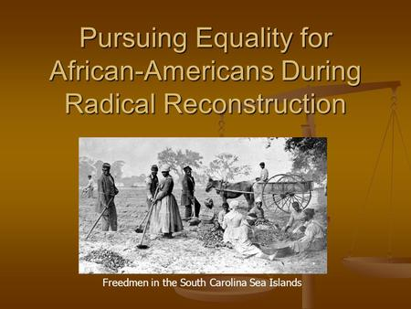 Pursuing Equality for African-Americans During Radical Reconstruction Freedmen in the South Carolina Sea Islands.