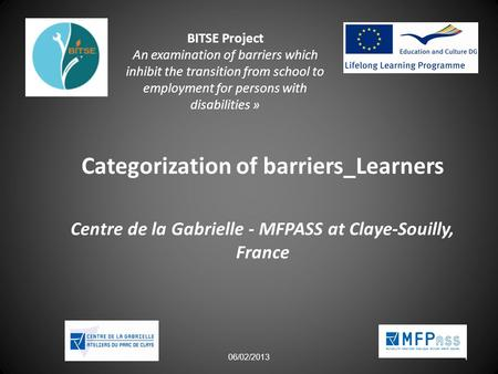 06/02/2013 1 BITSE Project An examination of barriers which inhibit the transition from school to employment for persons with disabilities » Categorization.