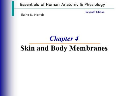 Essentials of Human Anatomy & Physiology Seventh Edition Elaine N. Marieb Chapter 4 Skin and Body Membranes.