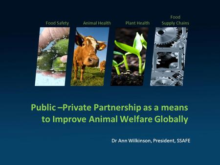Public –Private Partnership as a means to Improve Animal Welfare Globally Dr Ann Wilkinson, President, SSAFE Food SafetyAnimal HealthPlant Health Food.