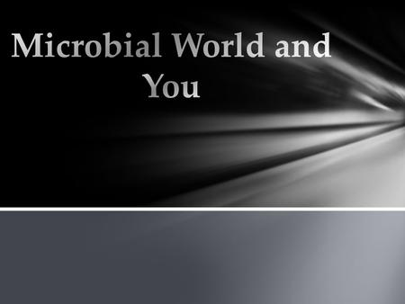 Micro - too small to be seen with the naked eye Bio - life ology - study of What is Microbiology?