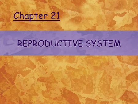 REPRODUCTIVE SYSTEM Chapter 21. © 2004 Delmar Learning, a Division of Thomson Learning, Inc. FUNCTIONS OF THE REPRODUCTIVE SYSTEM The reproductive system.