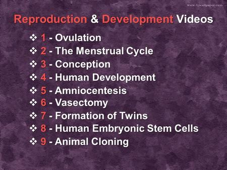 Reproduction & Development Videos 1 -Ovulation 1 -Ovulation  1 - Ovulation 1 - Ovulation 2 - The Menstrual Cycle 2 - The Menstrual Cycle  2 - The Menstrual.