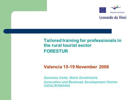 Tailored training for professionals in the rural tourist sector FORESTUR Valencia 15-19 November 2006 Domnica Cotet, Maria Dumitrache Innovation and Business.