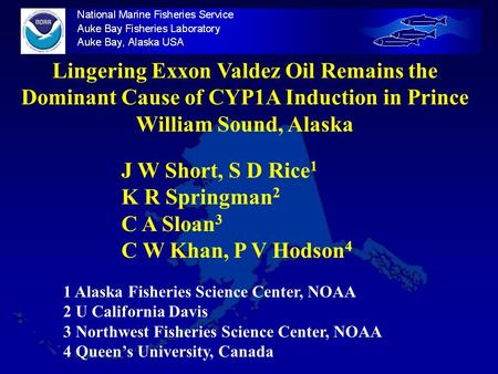 Lingering Exxon Valdez Oil Remains the Dominant Cause of CYP1A Induction in Prince William Sound, Alaska J W Short, S D Rice 1 K R Springman 2 C A Sloan.