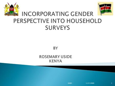 BY ROSEMARY USIDE KENYA 1KNBS1/27/2009. The Government has made efforts:  To mainstream gender at all levels  Achieve gender equity One of the initiatives.