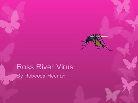 Ross River Virus By Rebecca Heenan. What is the Disease?  Ross River Virus (RRV) is a widespread mosquito-borne pathogen and is Australia's most common.