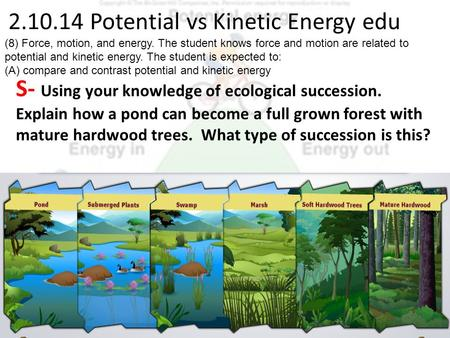 2.10.14 Potential vs Kinetic Energy edu S- Using your knowledge of ecological succession. Explain how a pond can become a full grown forest with mature.