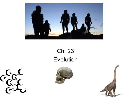 EVOLUTION Ch. 23 Evolution. Evolution Outline Formation of the earth & chemical evolution Early beginnings of cells Critical events leading to evolution.