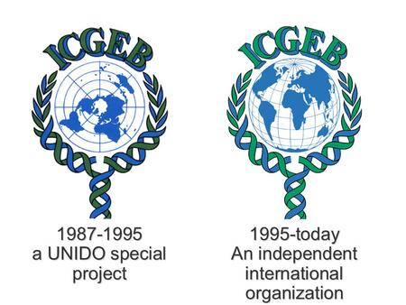 1987-1995 a UNIDO special project 1995-today An independent international organization.