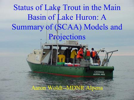 Status of Lake Trout in the Main Basin of Lake Huron: A Summary of (SCAA) Models and Projections Aaron Woldt--MDNR Alpena.