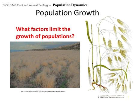 Population Growth What factors limit the growth of populations?