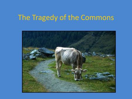 The Tragedy of the Commons. Garrett Hardin American Ecologist and Microbiologist (1915-2003) Controversial figure Concerned with overpopulation Pro-abortion.