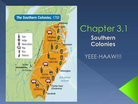 Southern Colonies YEEE-HAAW!!!