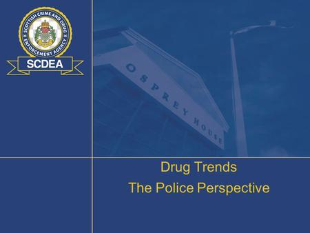 Drug Trends The Police Perspective. Global Picture - Opium 2007 Global Cultivation Afghanistan – 82% of world cultivation (92% of opium production) SE.