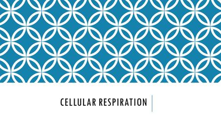 CELLULAR RESPIRATION. CHAPTER 9 SECTION 1 CELLULAR RESPIRATION OVERVIEW Process that releases energy by breaking down food in the presence of oxygen.