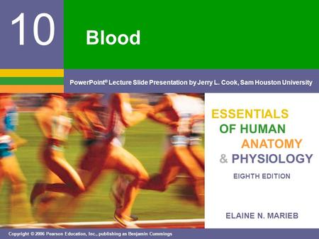 ELAINE N. MARIEB EIGHTH EDITION 10 Copyright © 2006 Pearson Education, Inc., publishing as Benjamin Cummings PowerPoint ® Lecture Slide Presentation by.