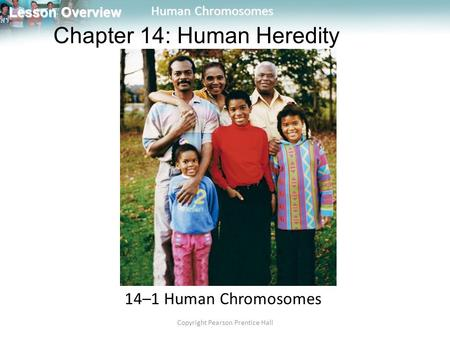 Lesson Overview Lesson Overview Human Chromosomes Copyright Pearson Prentice Hall 14–1 Human Chromosomes Chapter 14: Human Heredity.