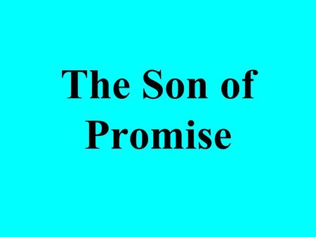 The Son of Promise. Laughing at God's Promise When Abraham was 99, God told him Sarah (princess) would bear a son (Gen. 17:15-16) –Paul said he hoped.