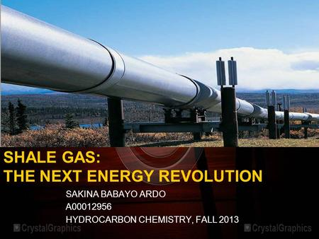 SHALE GAS: THE NEXT ENERGY REVOLUTION SAKINA BABAYO ARDO A00012956 HYDROCARBON CHEMISTRY, FALL 2013.