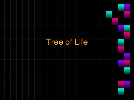 Tree of Life. Tree of Life: trees function n How would they have understood the tree of life without knowing what death meant? n Does Gen 2:16 imply they.