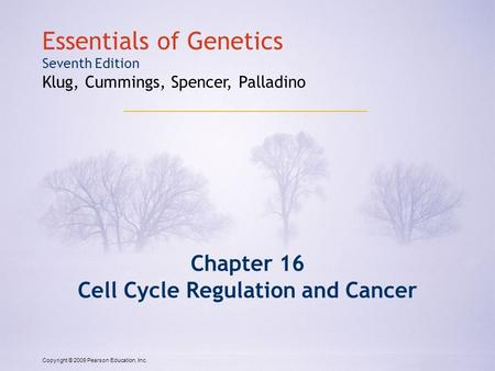 Copyright © 2009 Pearson Education, Inc. Essentials of Genetics Seventh Edition Klug, Cummings, Spencer, Palladino Chapter 16 Cell Cycle Regulation and.