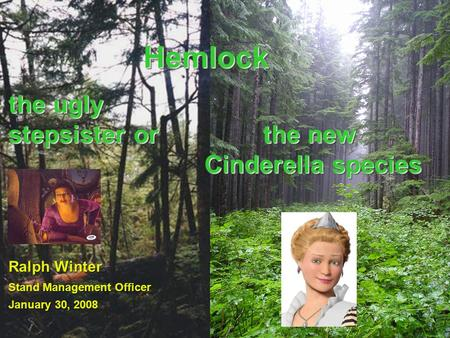 HemlockHemlock Ralph Winter Stand Management Officer January 30, 2008 the ugly stepsister or the new Cinderella species Cinderella species the new Cinderella.