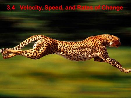 3.4 Velocity, Speed, and Rates of Change. downward -256 2, 8.