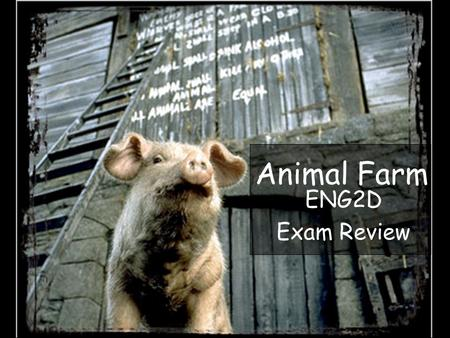 a comparison of george orwells animal farm and marxism and the 1917 russian revolution Get free homework help on george orwell's animal farm: book summary animals on mr jones' manor farm embrace animalism and stage a revolution to one of orwell's goals in writing animal farm was to portray the russian (or bolshevik) revolution of 1917 as one that resulted in a.