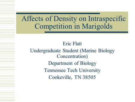 Affects of Density on Intraspecific Competition in Marigolds Eric Flatt Undergraduate Student (Marine Biology Concentration) Department of Biology Tennessee.