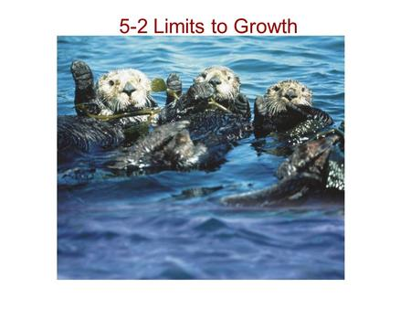 5-2 Limits to Growth. Limiting Factors The primary productivity of an ecosystem can be reduced when there is an insufficient supply of a particular nutrient.