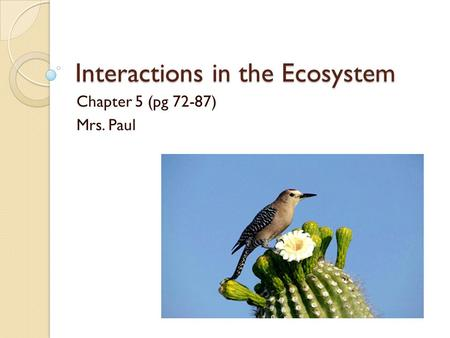 Interactions in the Ecosystem Chapter 5 (pg 72-87) Mrs. Paul.