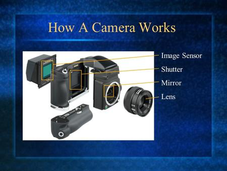 How A Camera Works Image Sensor Shutter Mirror Lens.