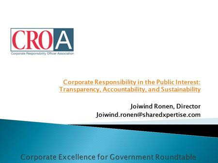 Corporate Responsibility in the Public Interest: Transparency, Accountability, and Sustainability Joiwind Ronen, Director
