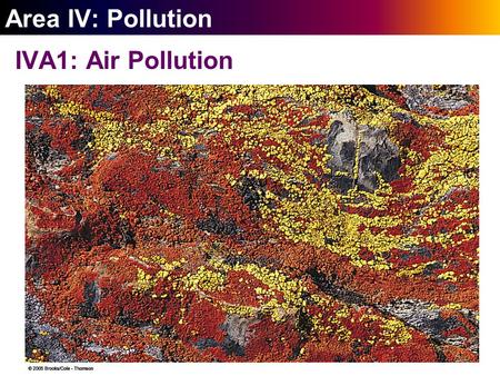 ` Area IV: <strong>Pollution</strong> IVA1: <strong>Air</strong> <strong>Pollution</strong>. ` 20-2 Outdoor <strong>Air</strong> <strong>Pollution</strong> Outdoor <strong>air</strong> <strong>pollution</strong> comes mostly from natural sources and burning fossil fuels.